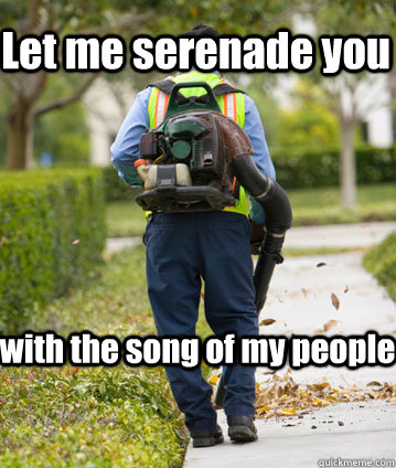 Let me serenade you with the song of my people - Mexican