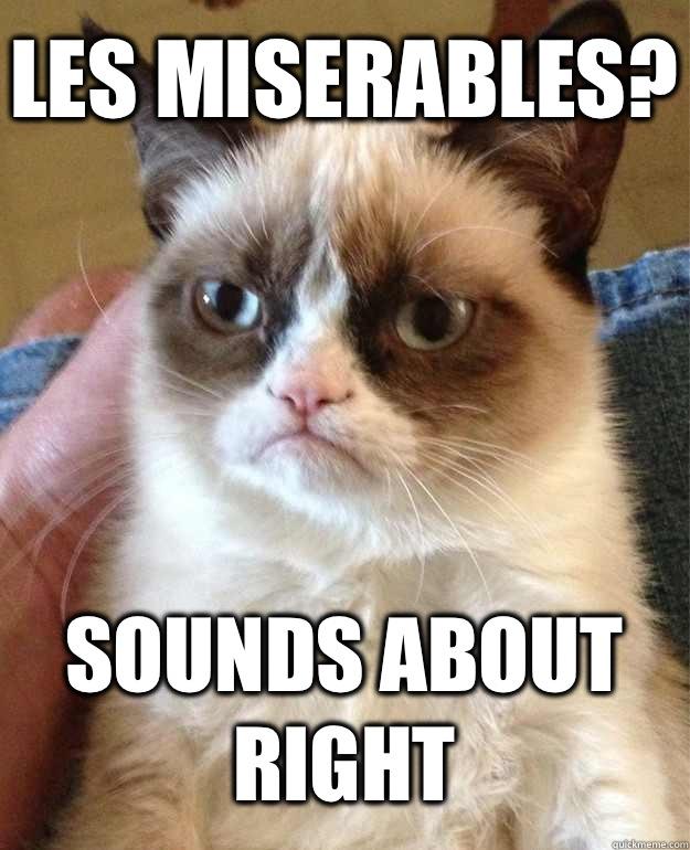 Les Miserables Sounds About Right Grumpy Cat Quickmeme