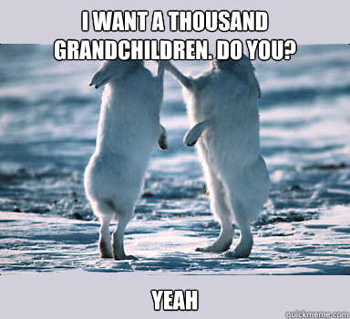 I Want A Thousand Grandchildren Do You Yeah Bunny Bros Quickmeme