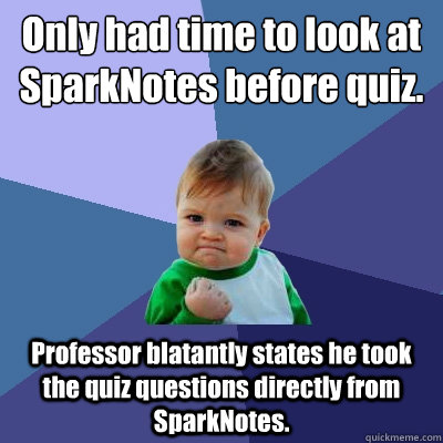 Only had time to look at SparkNotes before quiz  Professor