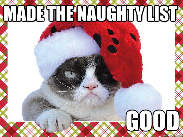 Funny Grumpy Cat Christmas Memes.Made The Naughty List Good A Grumpy Cat Christmas Quickmeme
