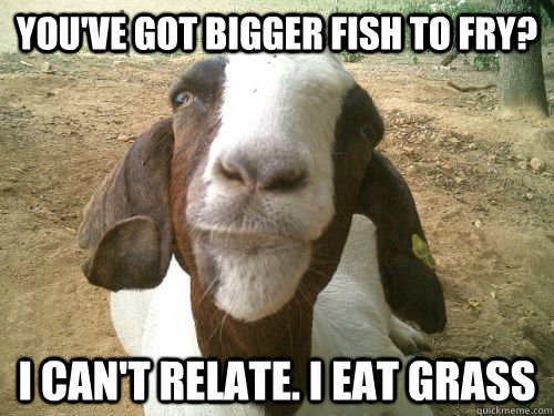 You Ve Got Bigger Fish To Fry I Can T Relate I Eat Grass Bad