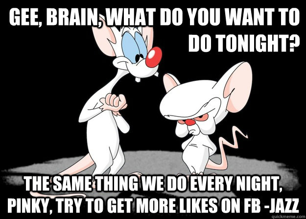 What will you do tonight