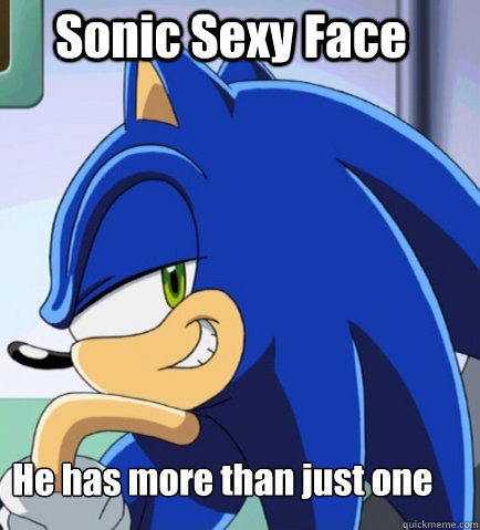 Sonic Sexy Face He Has More Than Just One Sonic Sexy Face Quickmeme