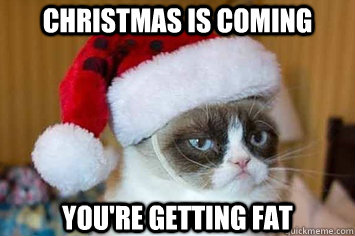 Funny Grumpy Cat Christmas Memes.Christmas Is Coming You Re Getting Fat Its Grumpy Cat