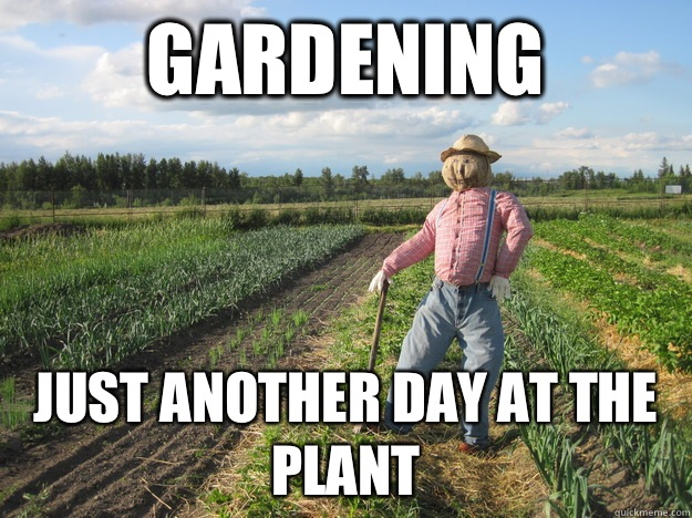 Gardening Just another day at the plant , Scarecrow , quickmeme