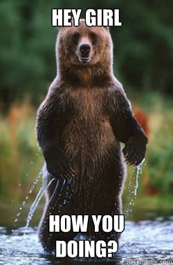 Hey Girl How You Doing Flirty Bear Quickmeme