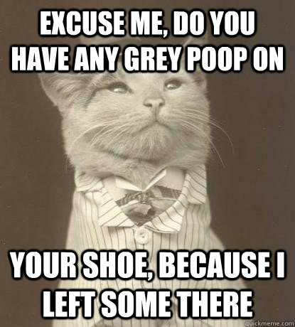 Excuse me, do you have any grey poop on your shoe, because I