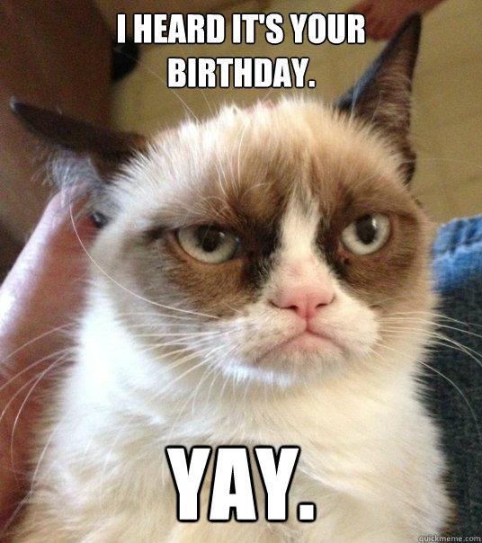 I Heard It S Your Birthday Yay Good Day Grumpy Cat Quickmeme Quarantine birthday got you down? quickmeme