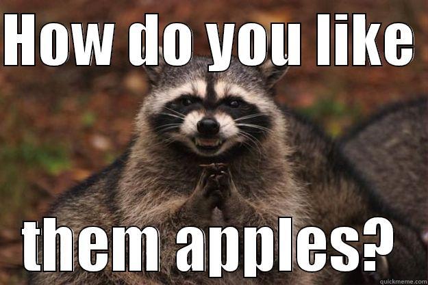 Political Raccoon Quickmeme