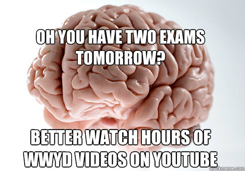 oh you have two exams tomorrow? better watch hours of WWYD