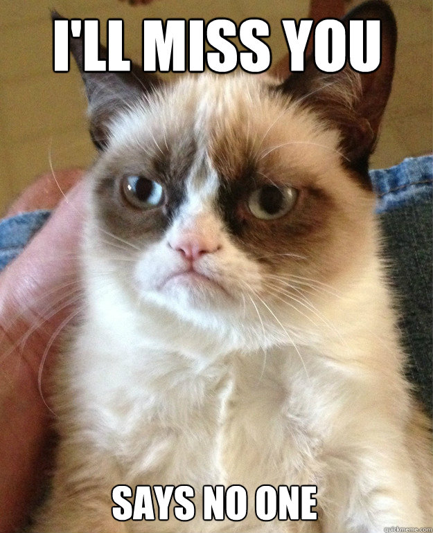 25 Best Memes About I Will Miss You All I Will Miss You All