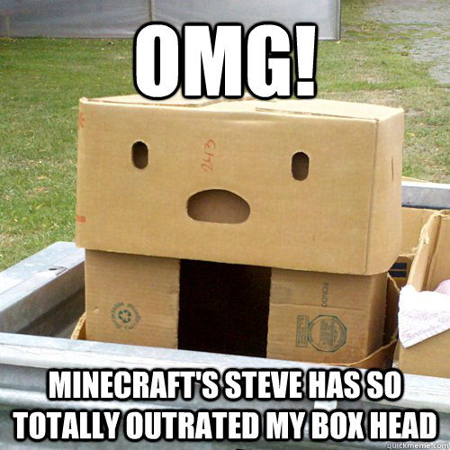 Omg Minecraft S Steve Has So Totally Outrated My Box Head