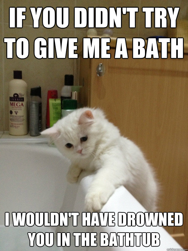 If You Didn T Try To Give Me A Bath I Wouldn T Have Drowned You In