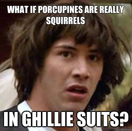 What if porcupines are really squirrels in ghillie suits