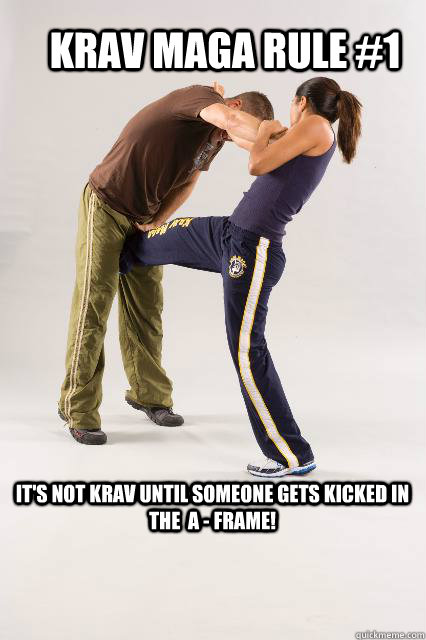 Krav Maga Rule 1 It S Not Krav Until Someone Gets Kicked In The A
