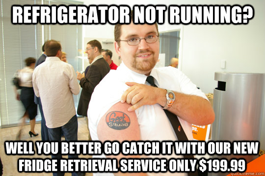 refrigerator not running? Well you better go catch it with