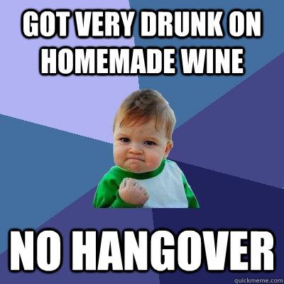 Got very drunk on homemade wine No hangover - Success Kid