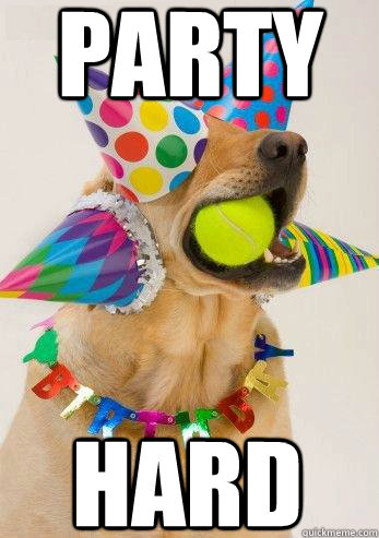 Party HARD - birthday dog - quickmeme