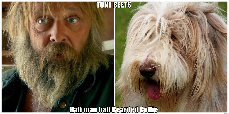 Tony Beets Memes