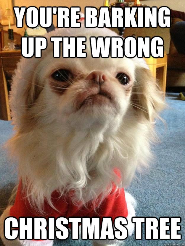 Dog Christmas Tree Meme.You Re Barking Up The Wrong Christmas Tree Santa Dog
