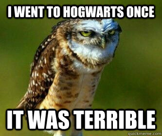 I Went To Hogwarts Once It Was Terrible Ornery Owl Quickmeme