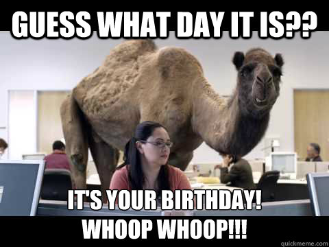 Guess What Day It Is It S Your Birthday Whoop Whoop Hump Day Camel Quickmeme