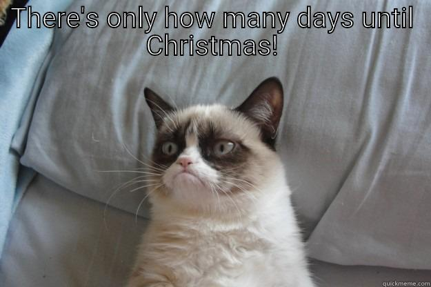 How Many Days Until Christmas Meme.My Christmas Spirit Is Dead Quickmeme