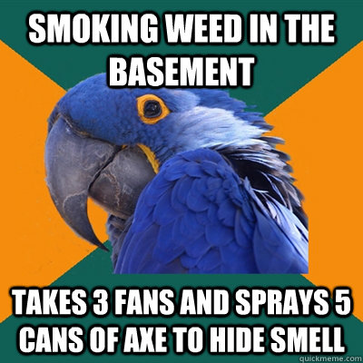 Smoking weed in the basement Takes 3 fans and sprays 5 cans