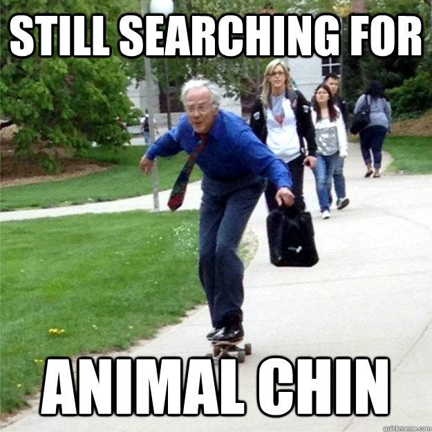 STILL SEARCHING FOR ANIMAL CHIN - Skating Prof - quickmeme