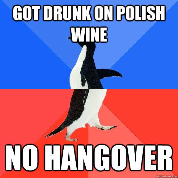 Got drunk on Polish Wine No hangover - Socially Awkward