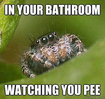 i am watching you pee