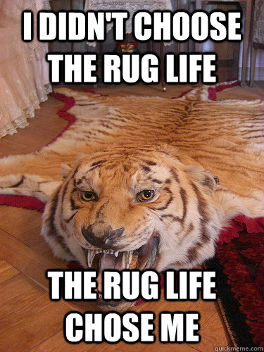 I didn't choose the rug life the rug