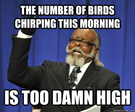 The number of birds chirping this morning is too damn high