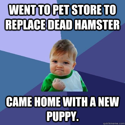 Went to pet store to replace dead hamster Came home with a