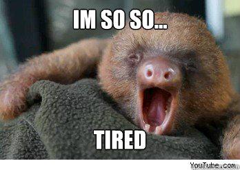 Im So So Tired Ermahgerd Sloth Quickmeme