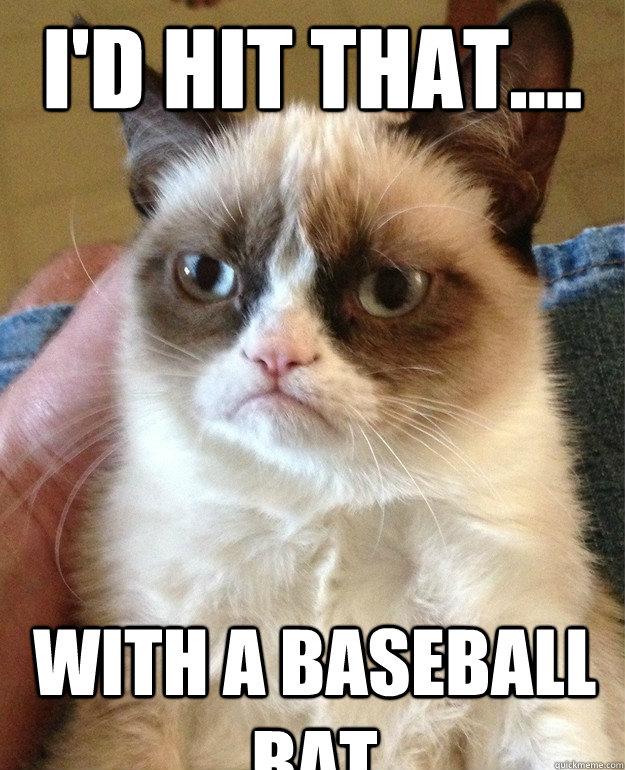 I D Hit That With A Baseball Bat Misc Quickmeme