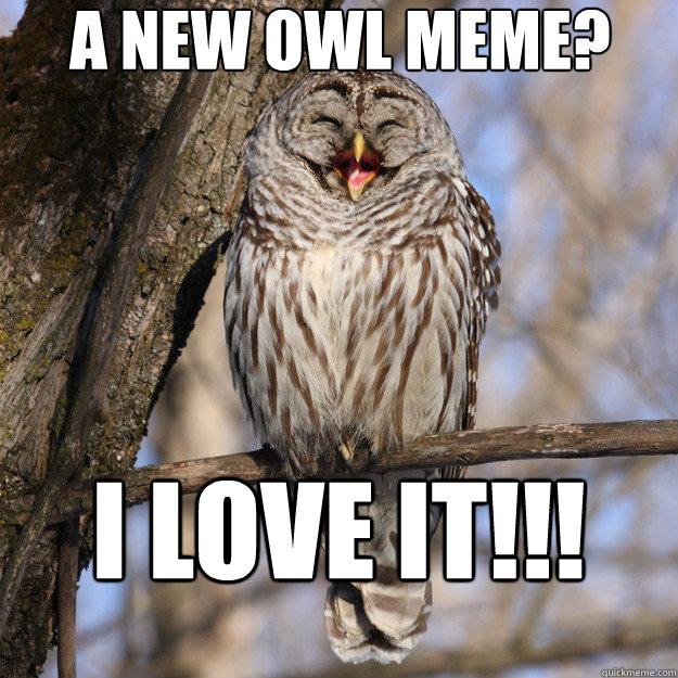 A New Owl Meme I Love It Easily Amused Owl Quickmeme