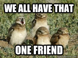 We All Have That One Friend Owl Snap Quickmeme