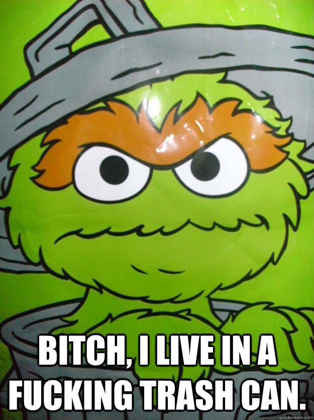 Bitch I Live In A Fucking Trash Can Oscar The Grouch
