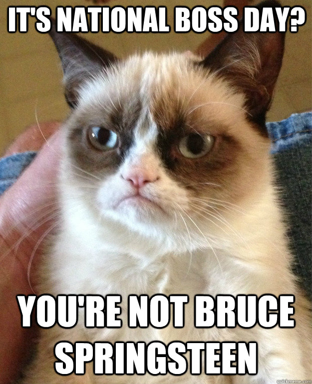 It S National Boss Day You Re Not Bruce Springsteen Grumpy Cat Quickmeme