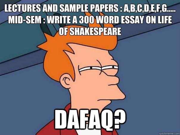 300 word essay meme'