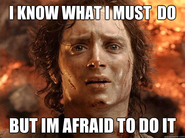 I Know What I Must Do But Im Afraid To Do It Frodo Quickmeme