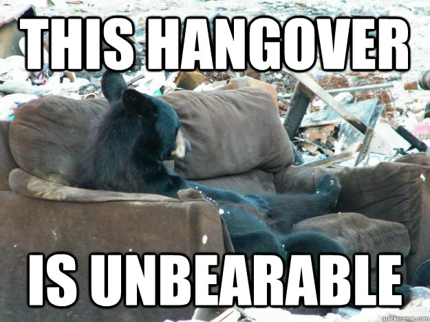 this hangover Is unbearable - Party Bear - quickmeme